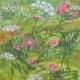 zvety4
